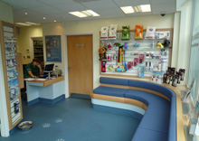 Willet House Veterinary Surgeons, Hampton - Seating & Reception Area