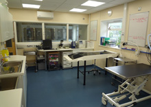 Vale Veterinary Group, Honiton - Preparation Room